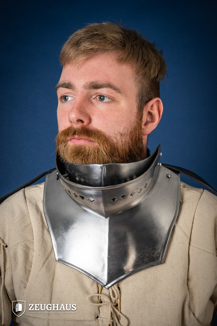 Collar with beard and back part, polished Big Picture-0